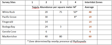 Tegula abundance per square meter